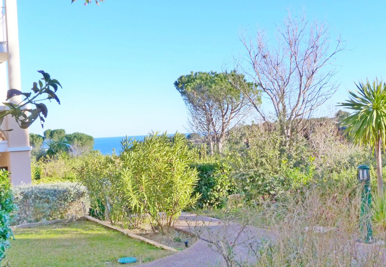 Appartement à Agay - Cap Esterel Village : 2 pièces climatisé rez de jardin F6 : 337la